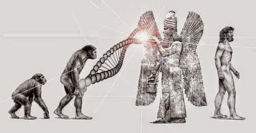 Mankind Human Species Missing Link the Anunnaki